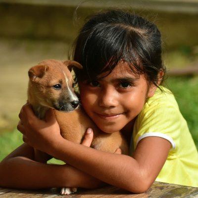 puppy-3074154_1920